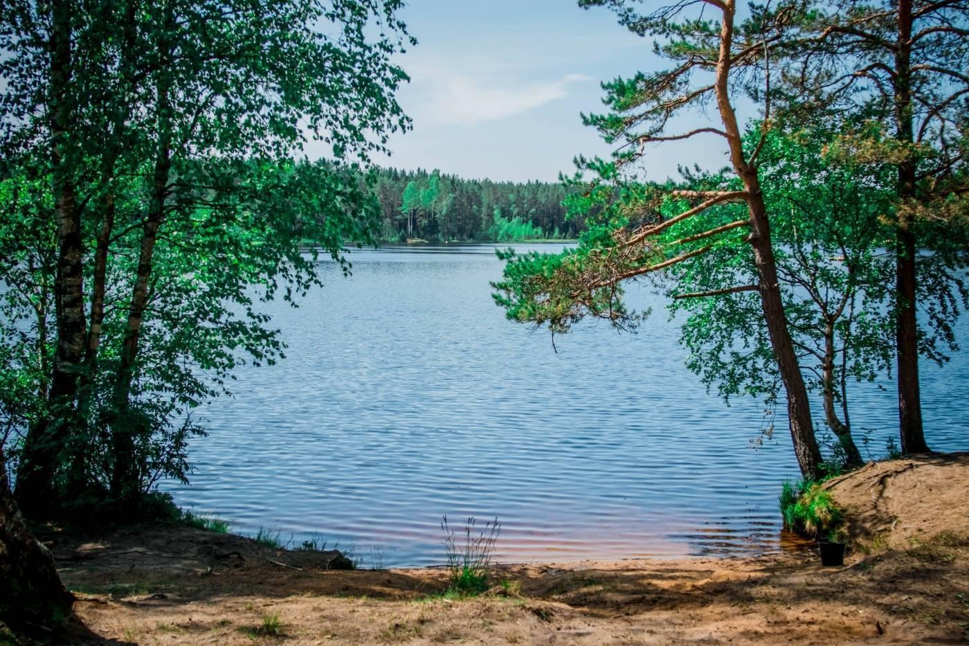 Орлинское озеро, гатчинский район, ленинградская область: рыбалка, отзывы, отели рядом — туристер.ру