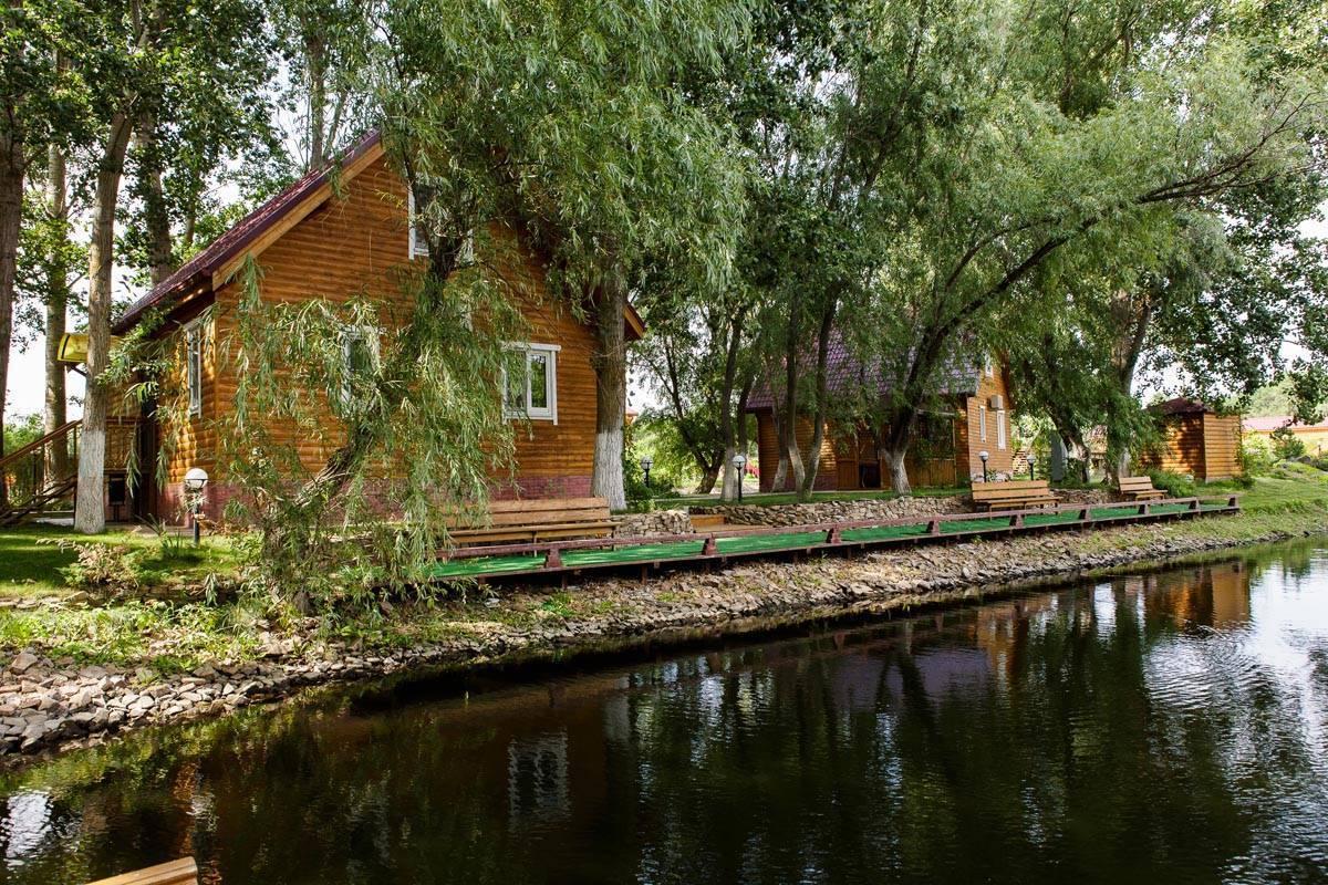 Дом на дереве, землянка хоббита или средневековый замок: самые необычные отели подмосковья