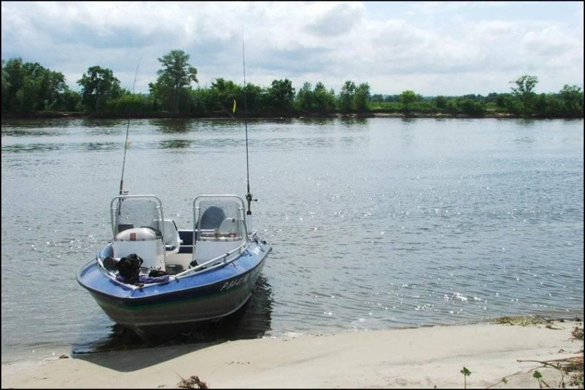 Рыбалка на дону в волгоградской области: видео, места и донская рыба