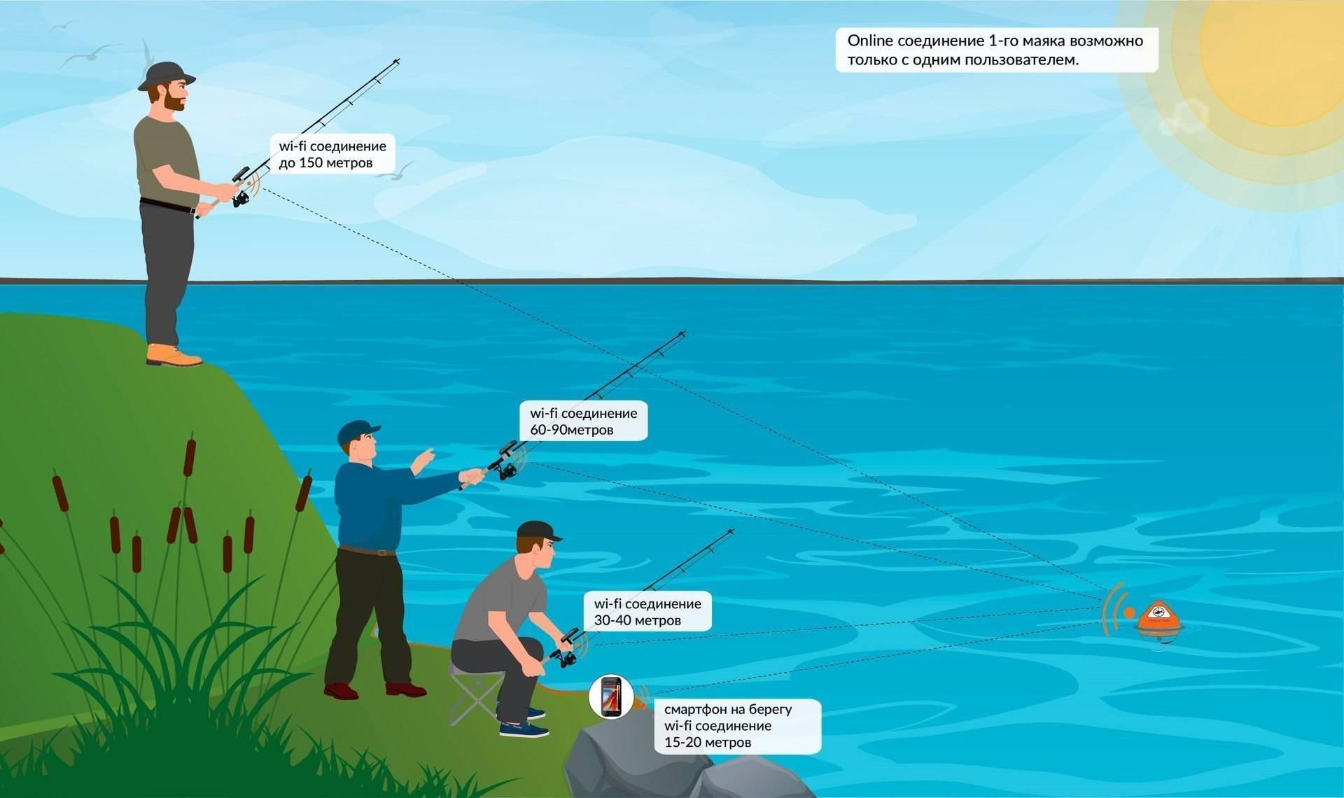 Беспроводной эхолот для летней и зимней рыбалки с берега: рейтинг-обзор 2019