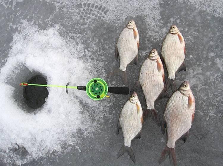 Ловля рыбы в глухозимье