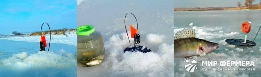 Как ловить судака на зимние жерлицы