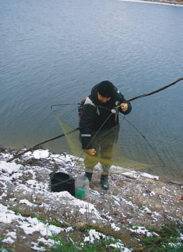 Как подобрать живца для рыбалки