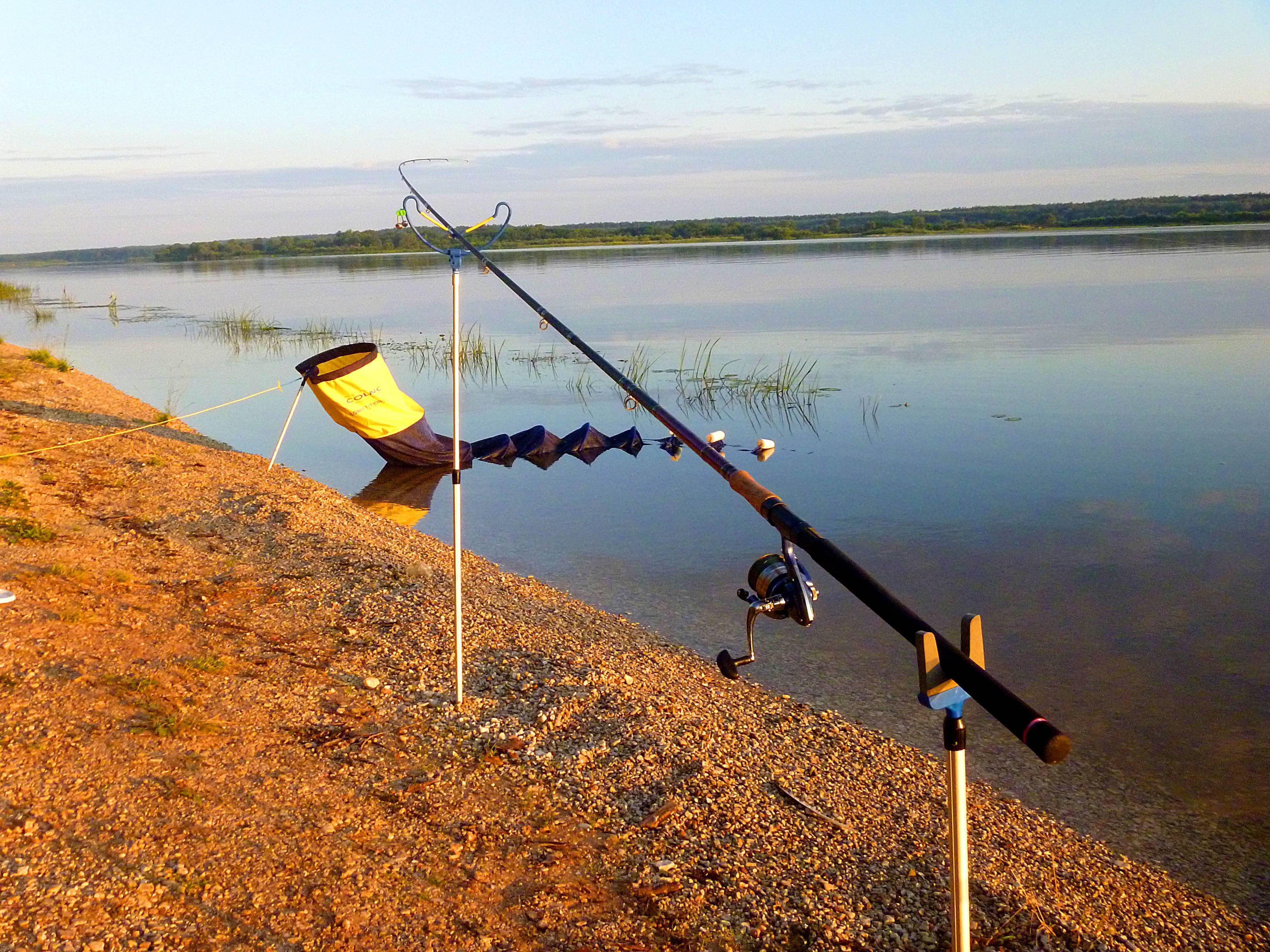 ✅ рыбалка на дубне, ловля рыбы на реке дубна - рыбзон.рф