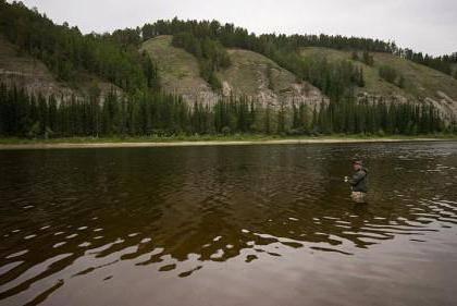 Рыбалка на реке лена: как и на что ловить