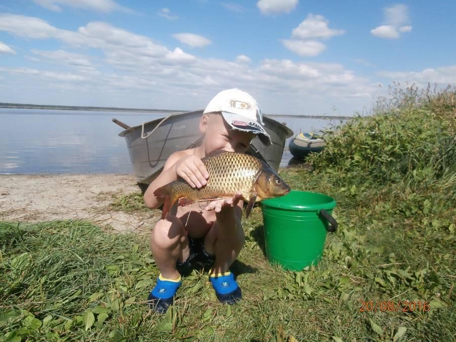 Озеро щелкун (щелкунское). рыбалка в 2020 году, отдых, отзывы, погода. отели рядом, фото, видео, как добраться — туристер. ру