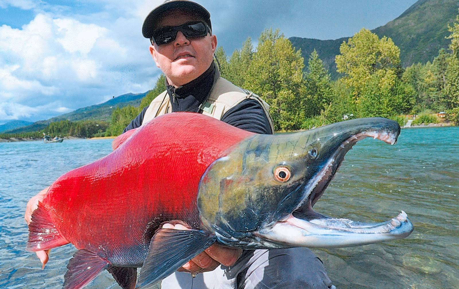 Рыбалка на каме: какая рыба водится, ловля летом с берега