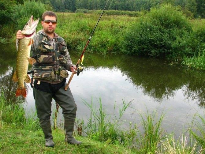Рыбалка на оке в серпуховском районе - обзор водоемов, отзывы рыбаков