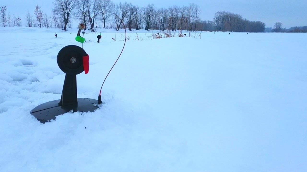 Как поймать щуку на жерлицы зимой
