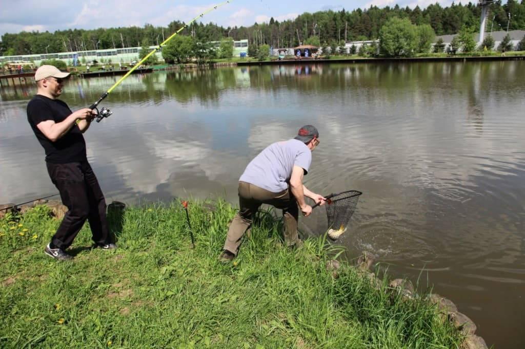 Рупасовские пруды (мытищи) — отличное место для отдыха и рыбалки