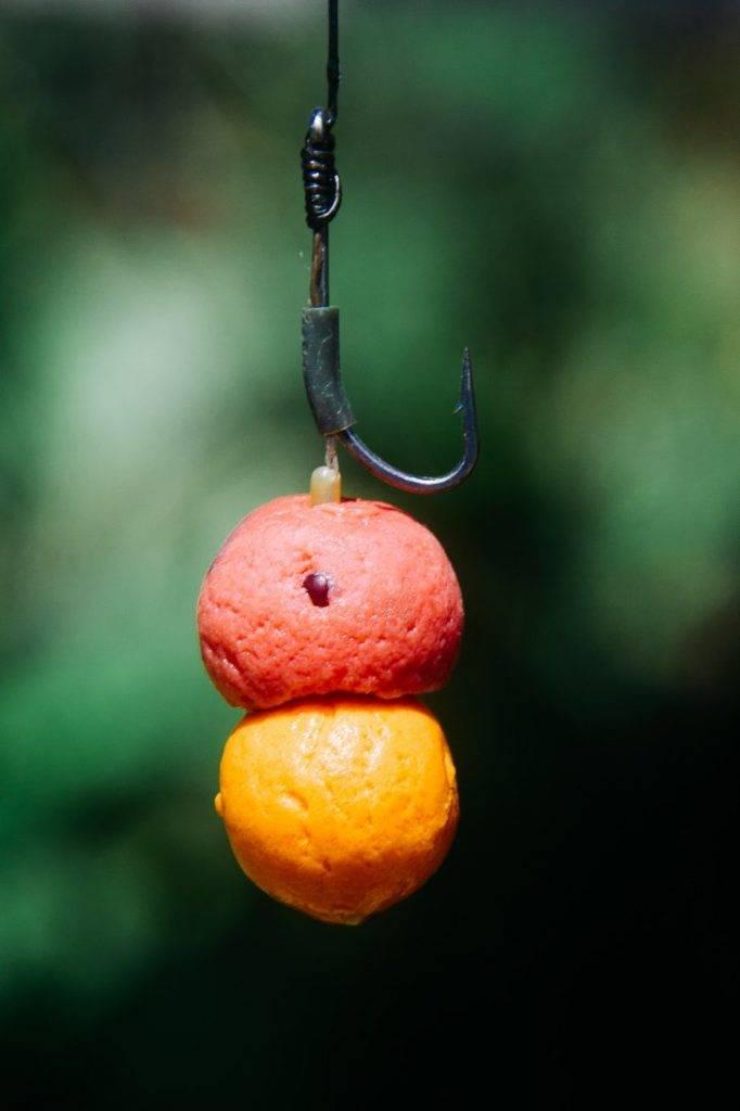 Как ловить на бойлы - какие лучше выбрать и какую рыбу на них ловят, популярные рецепты