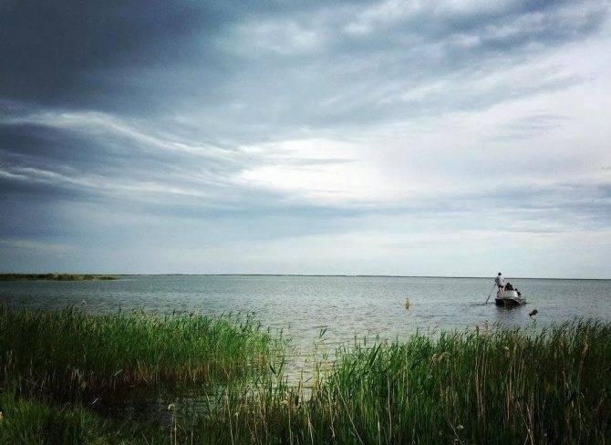 Где в новосибирске поймать щуку на спиннинг? - статьи о рыбалке