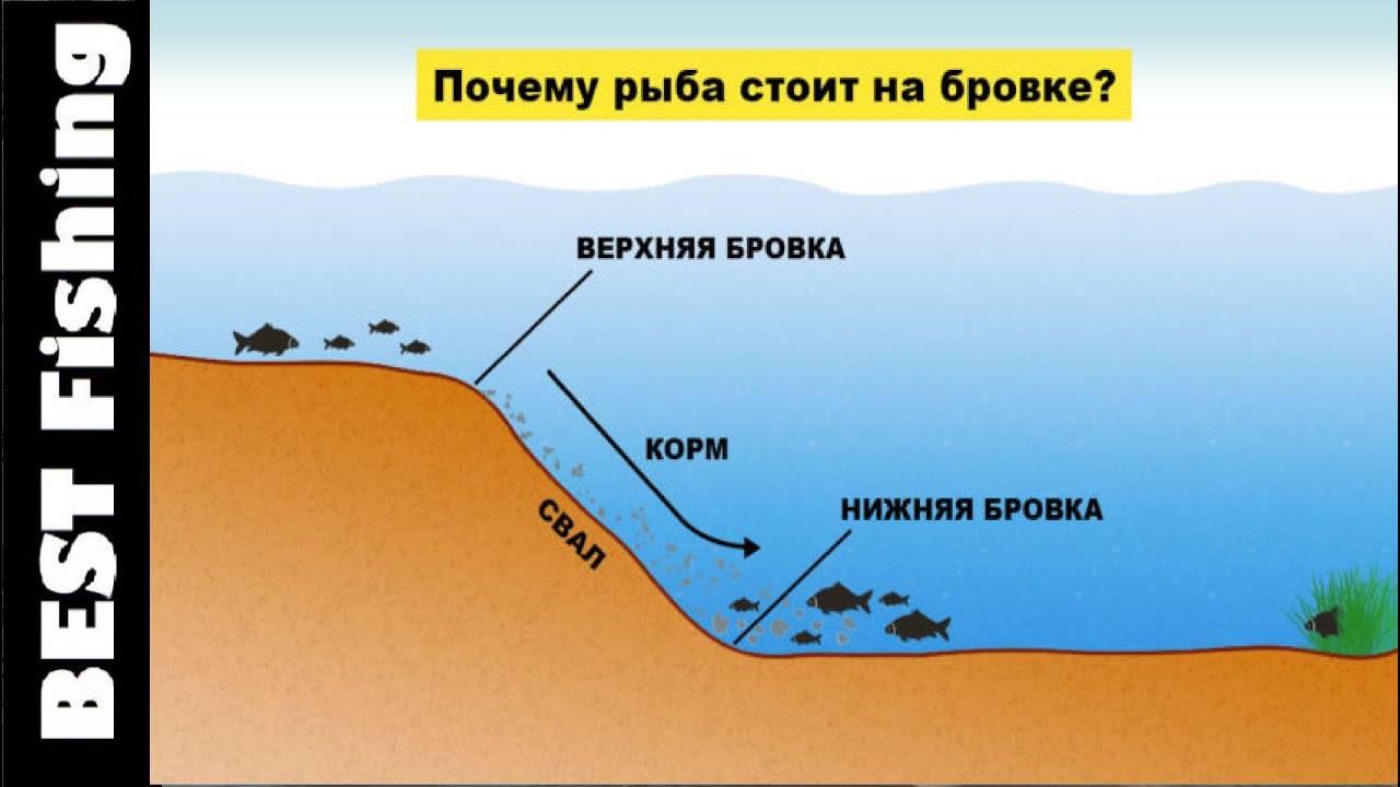 ✅ как найти яму на реке - flotilia.su