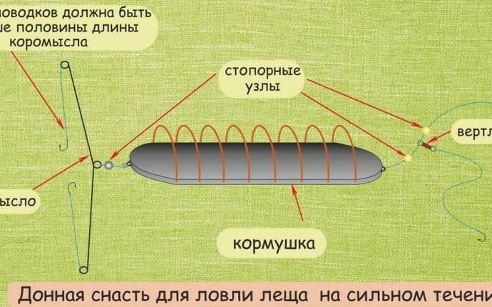 Ловля леща на фидер в разных условиях и сборка снасти ловля леща на фидер в разных условиях и сборка снасти