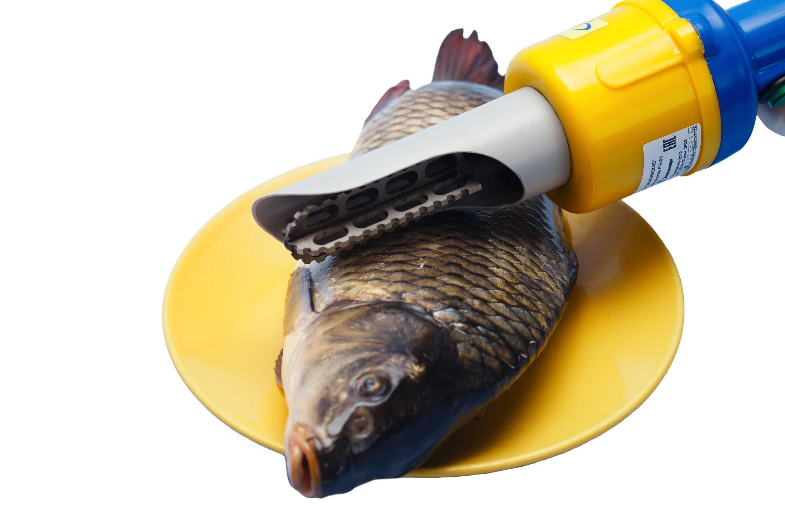 Как выбрать скребок для чистки рыбы
