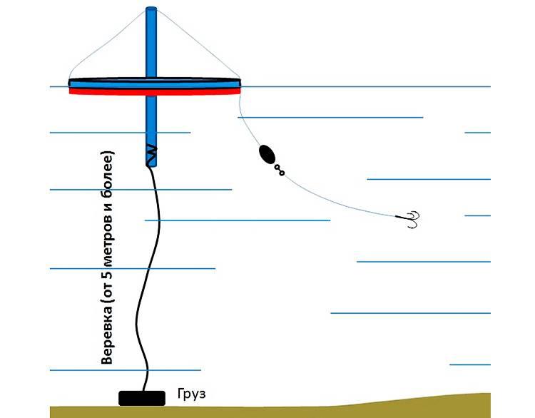 Как ловить щуку на кружки: устройство, оснастка и техника ужения