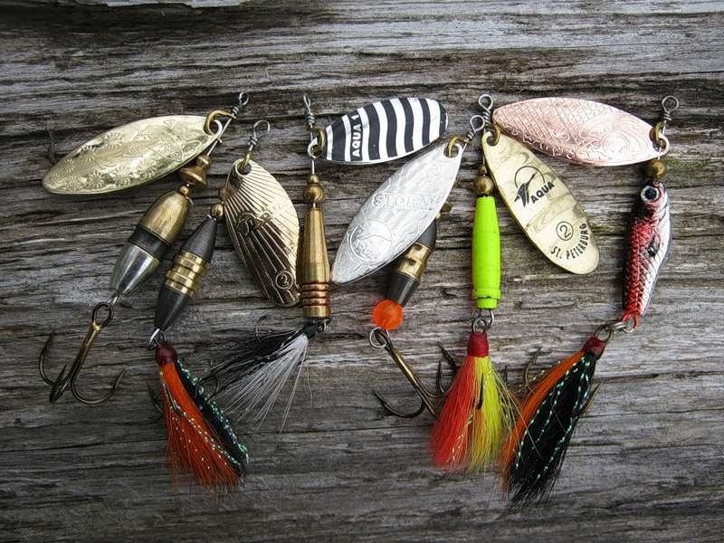 Особенности форелевой рыбалки на платных водоемах