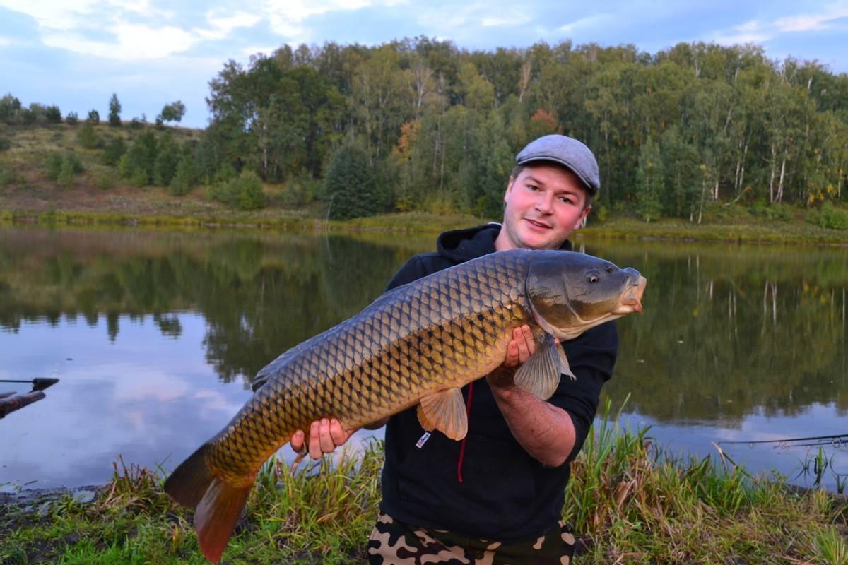 Рыбалка в ульяновске в разделе справочник на сайте поискпути