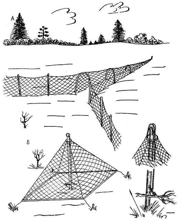 Морская рыбалка, подбираем необходимые снасти и приманку