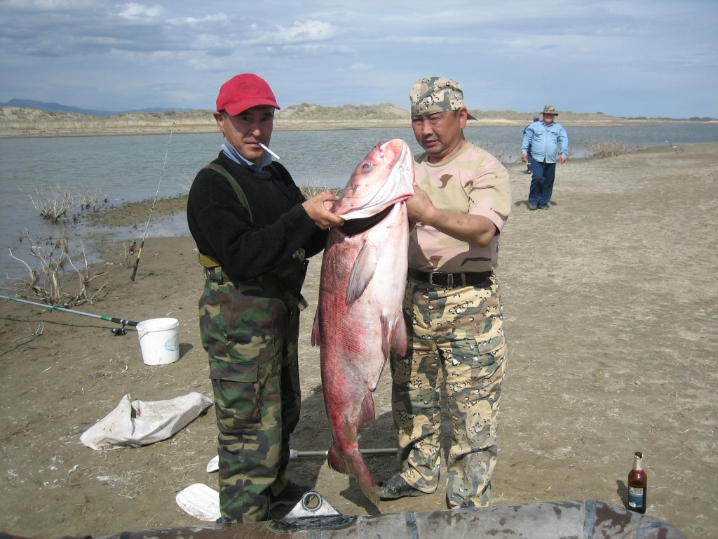 Самая лучшая насадка и приманка для ловли крупной рыбы. карп, белый амур.  тайна старых рыбаков.