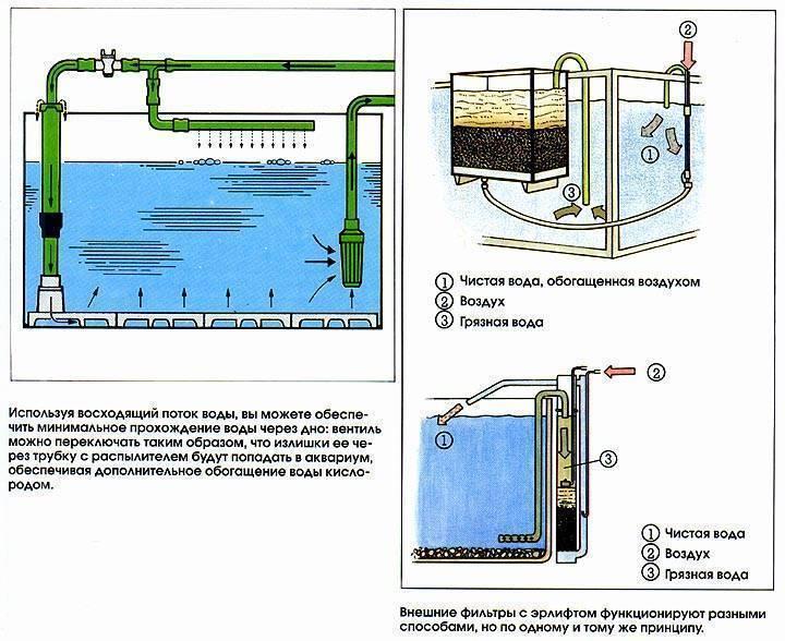 Что такое биофильтр для аквариума и зачем он нужен? как сделать своими руками?