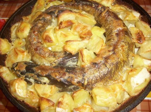 Блюда из щуки ? как приготовить щуку, быстрые и простые пошаговые рецепты с фото
