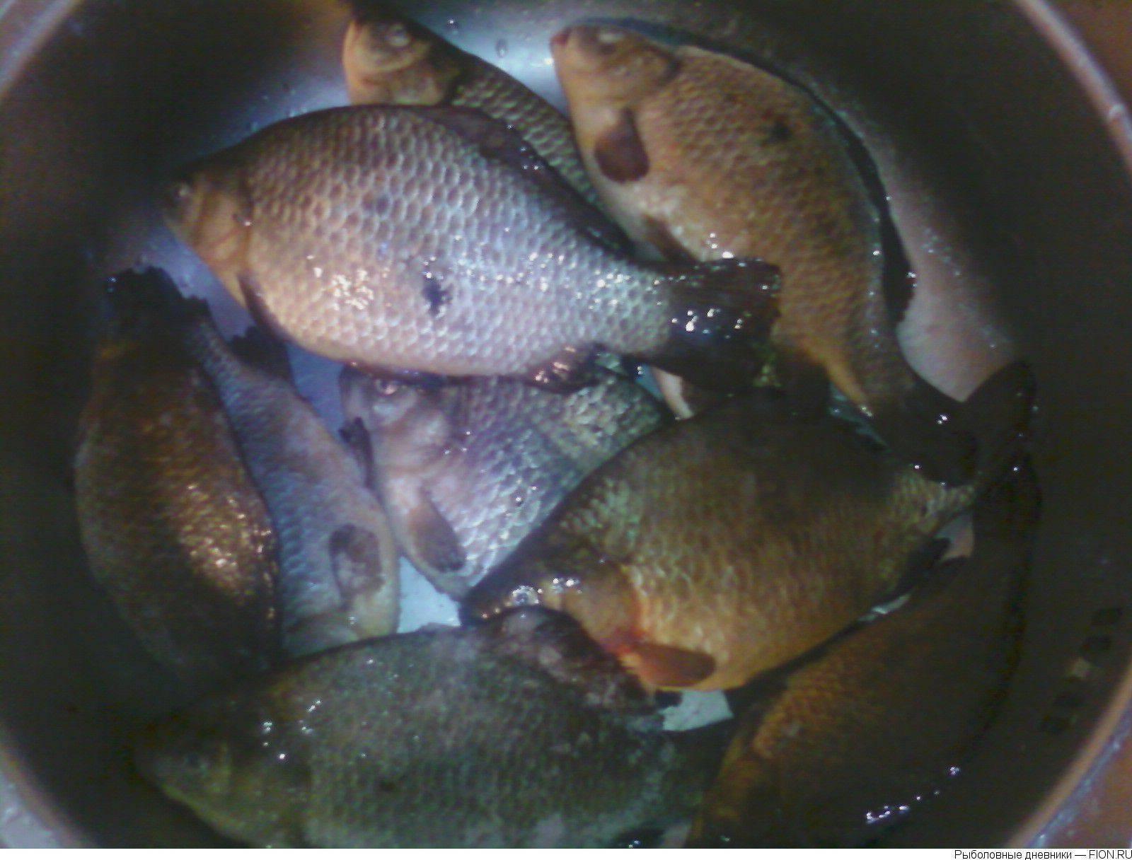 Рыбалка в свердловской области | (66) карта рыболовных мест