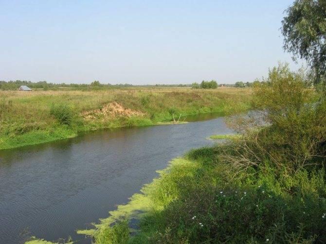 Рыбалка прудцы дмитровский район - про рыбалку