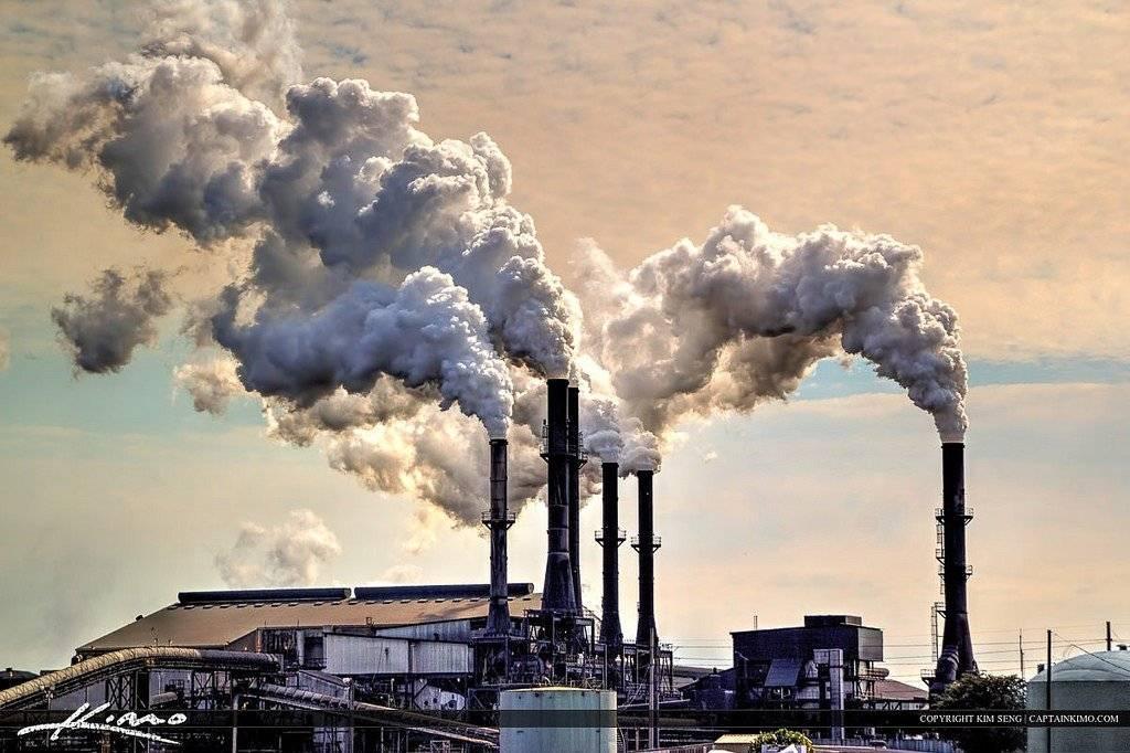 Экология и климат города новороссийск - состояние промышленности, лесных и водных ресурсов.