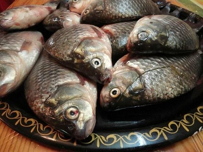 Как избавиться от запаха рыбы: с посуды, помещения, одежды, дивана, рук