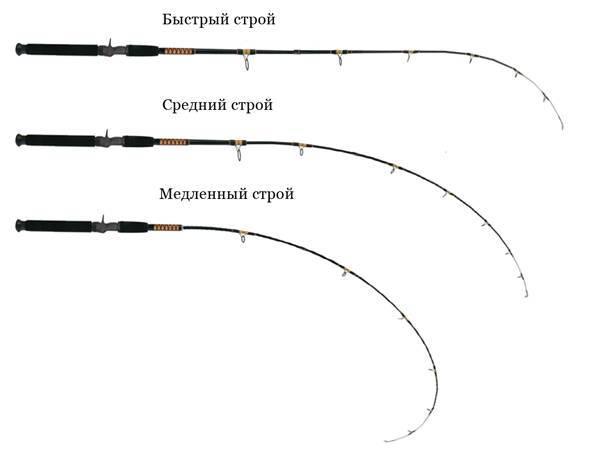 Виды спиннингов, их основные типы и характеристики
