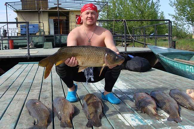 Рыбалка на дону в волгоградской области – куда отправиться?