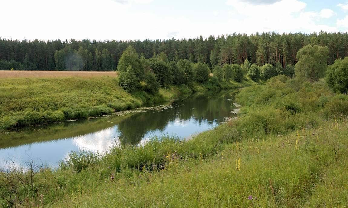 Памятники природы тверской области | команда кочующие