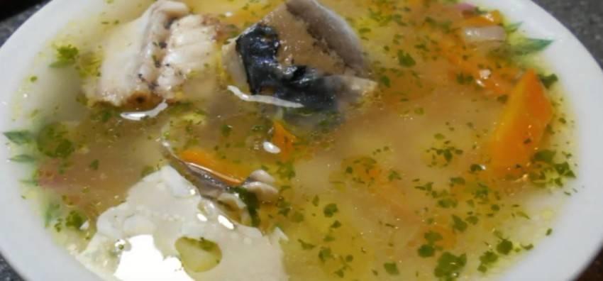 Вкусная уха из скумбрии свежемороженой. уха из свежемороженой скумбрии – пошаговый рецепт с фото