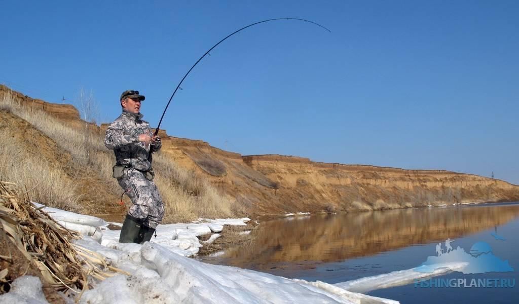 Ловля окуня весной по открытой воде - выбор мест и приманок