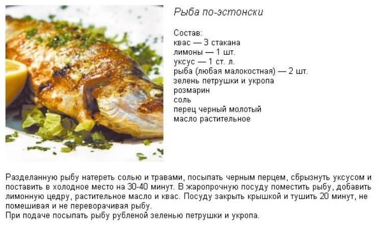Нильский окунь: места обитания, особенности вылова и употребления в пищу