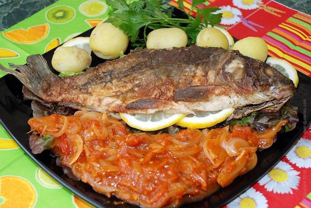 Карп жареный калорийность 100 грамм. рыба карп