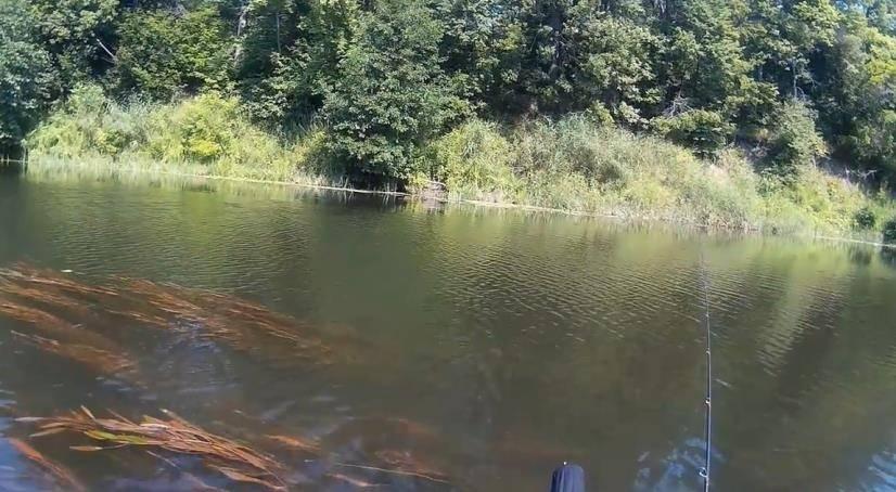 Рыбалка в одинцовском районе (одинцовский г.о.)