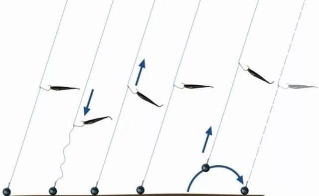 Дропшот (drop-shot) - всегда клюёт: состав снасти, монтаж и тактика ловли