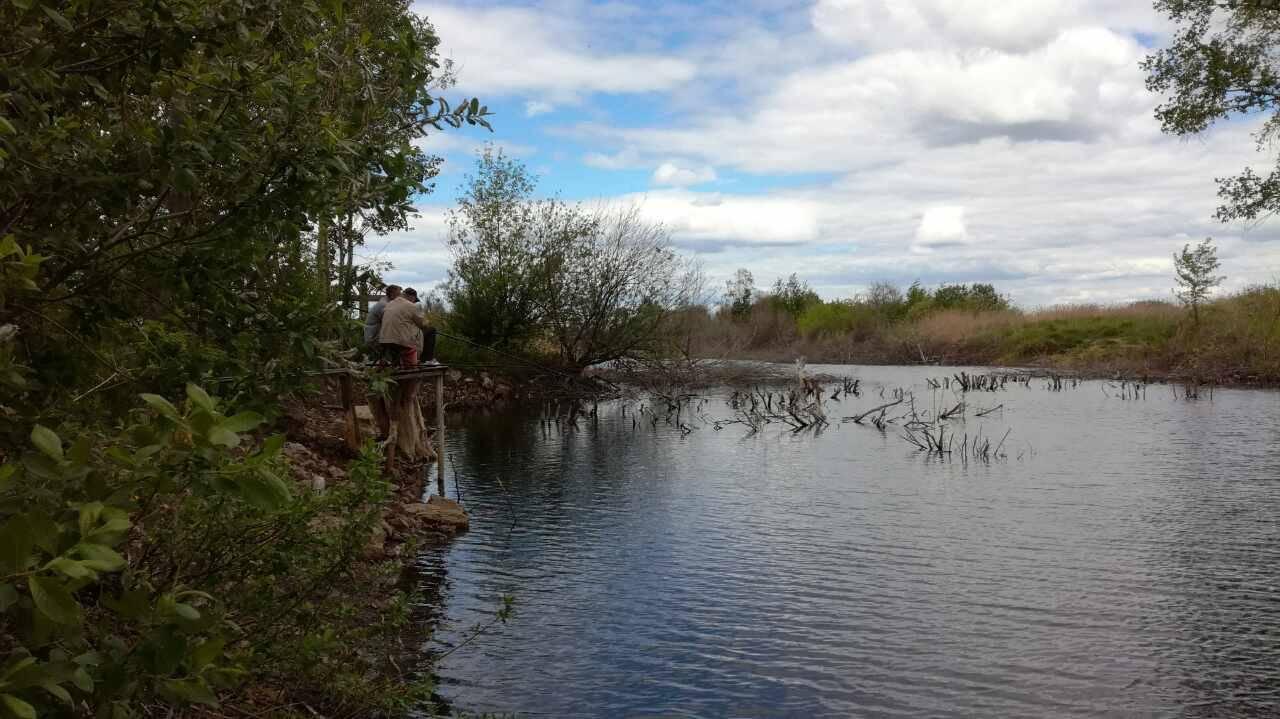Сообщества › Охота и Рыбалка › Блог › Рыбалка на платнике в Лопатино.