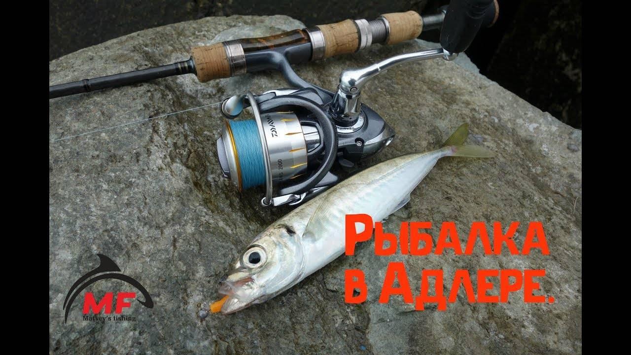 Лучшие места для рыбалки в сочи