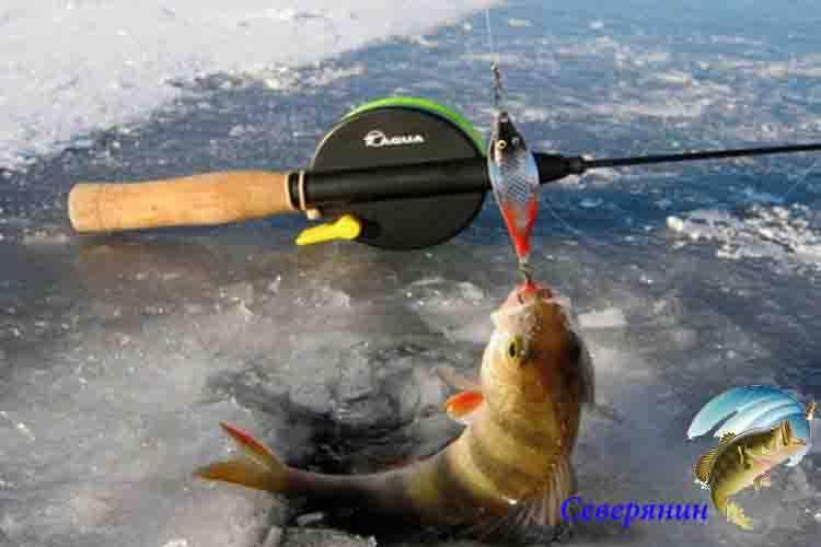 Эффективная зимняя и летняя блесна: бокоплав на судака и для ловли других рыб