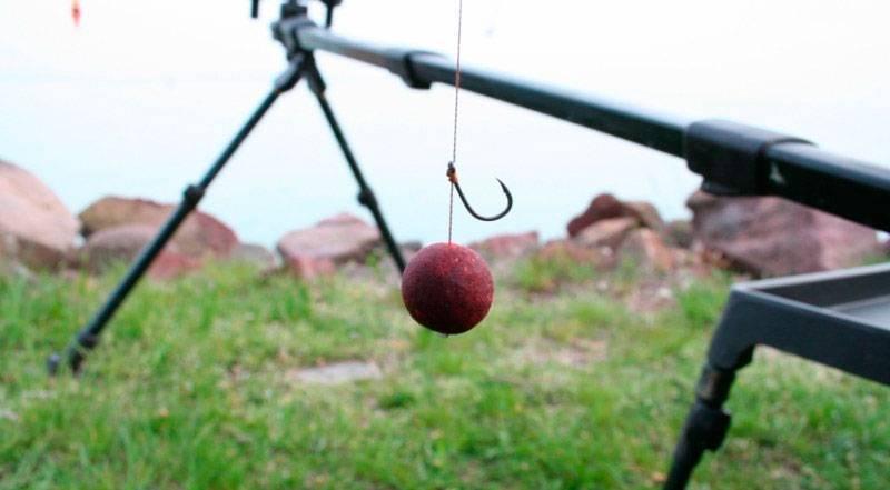 Ловля карпа на бойлы. советы опытных рыбаков