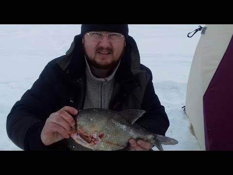 Ловля леща по первому льду: как найти и прикормить ловля леща по первому льду: как найти и прикормить