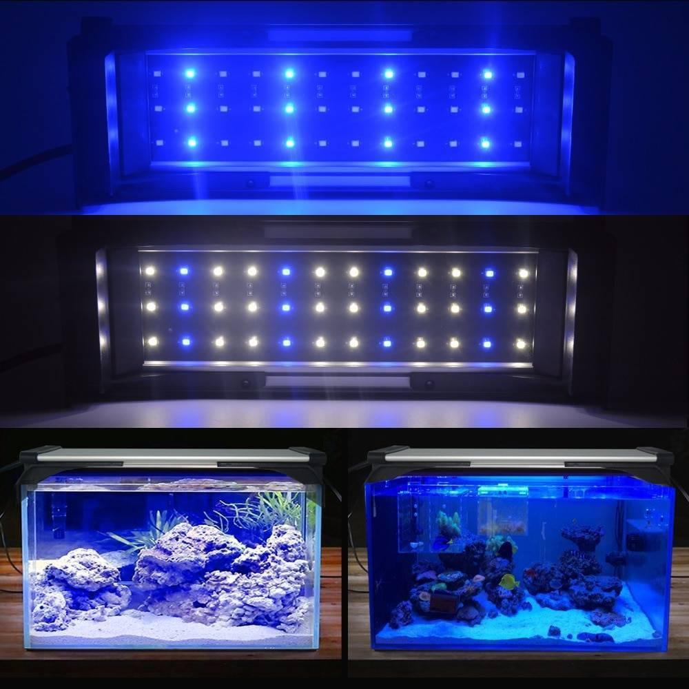 Светодиодная лента для аквариума: советы по выбору и размещению