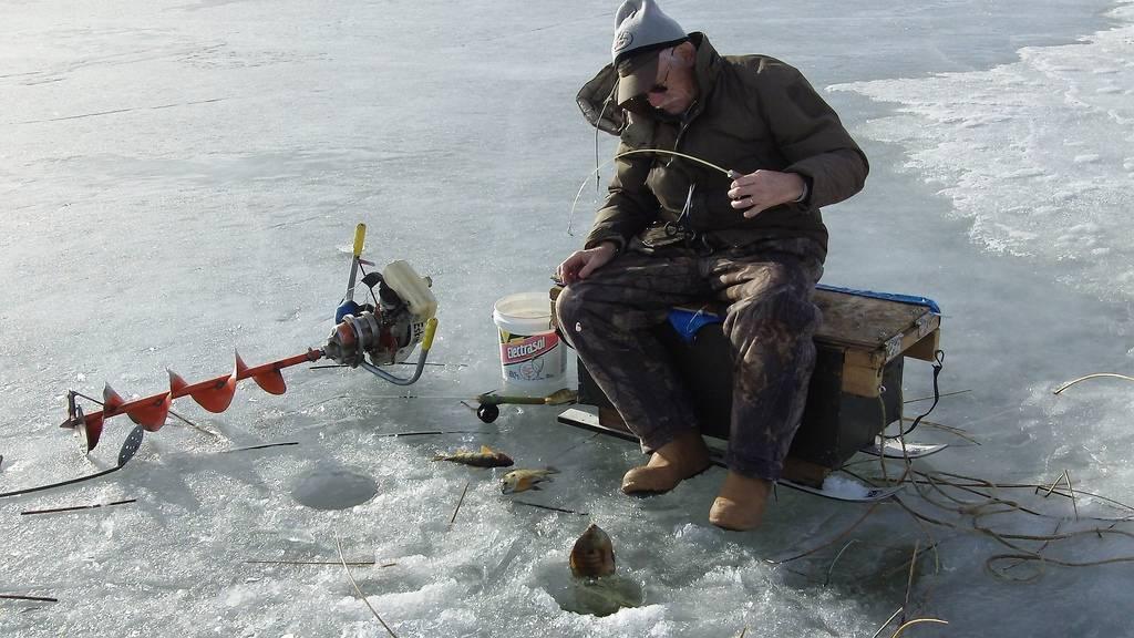 Китерня платник рыбалка искитимский район