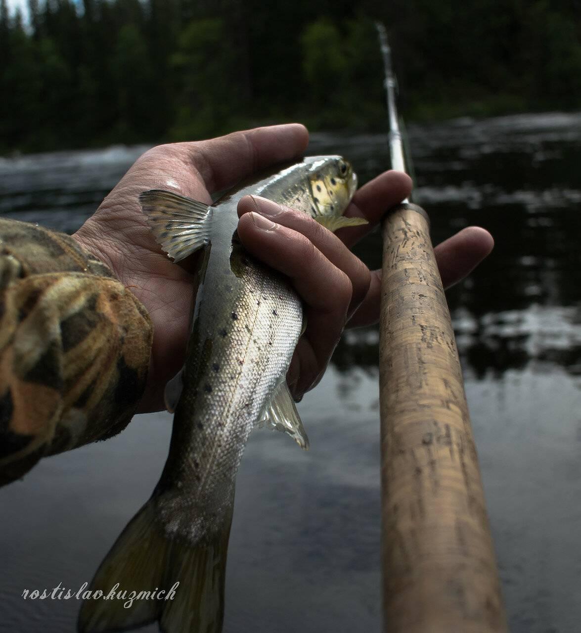 Рыбалка в карелии дикарем - выбор озера, лучшие места и особенности