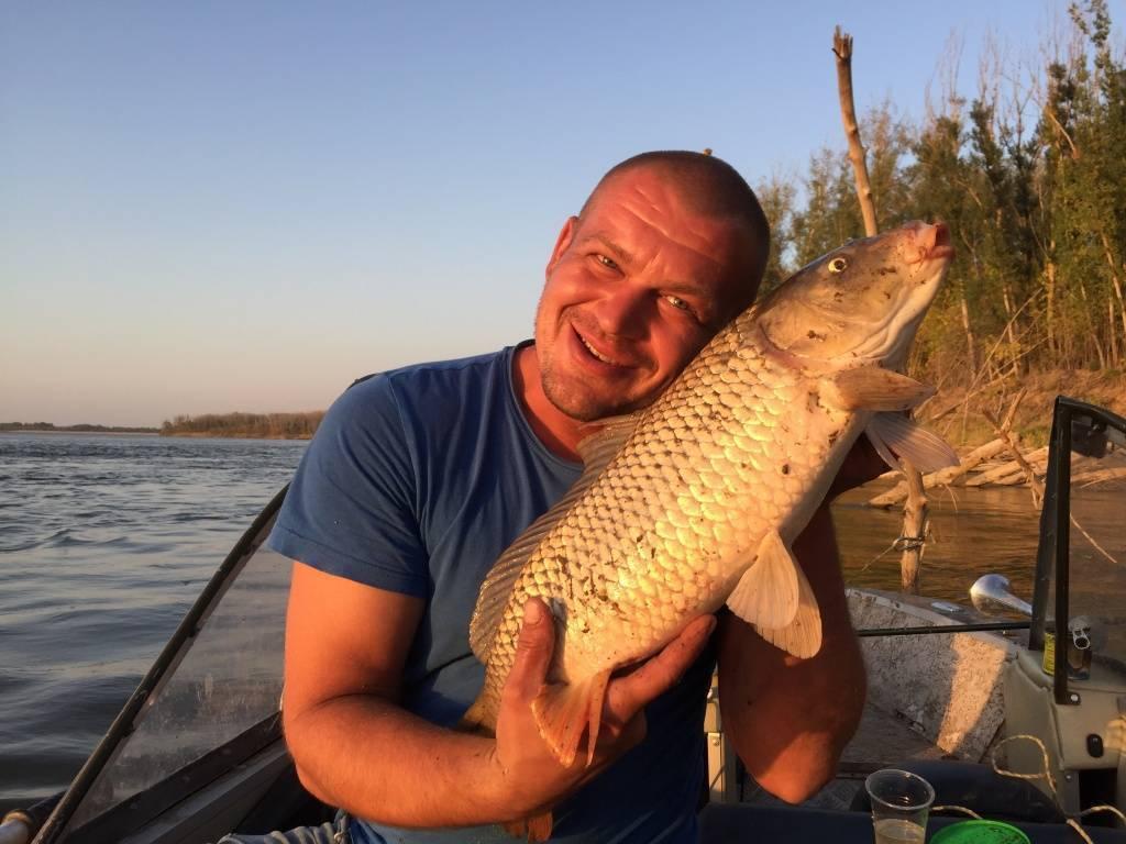 Рыбалка в сызрани: места и способы ловли - рыба