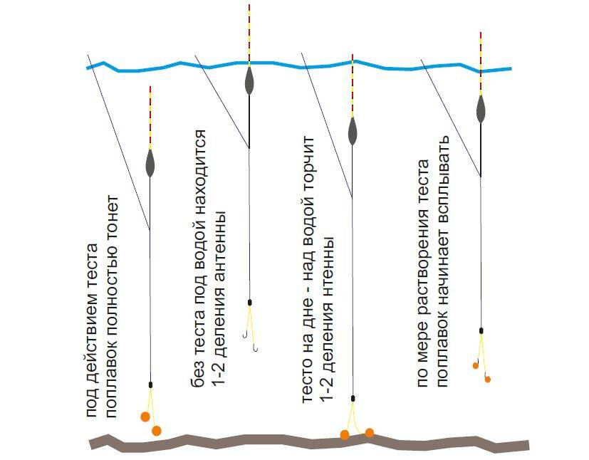 Промер глубины фидером: общие рекомендации и советы