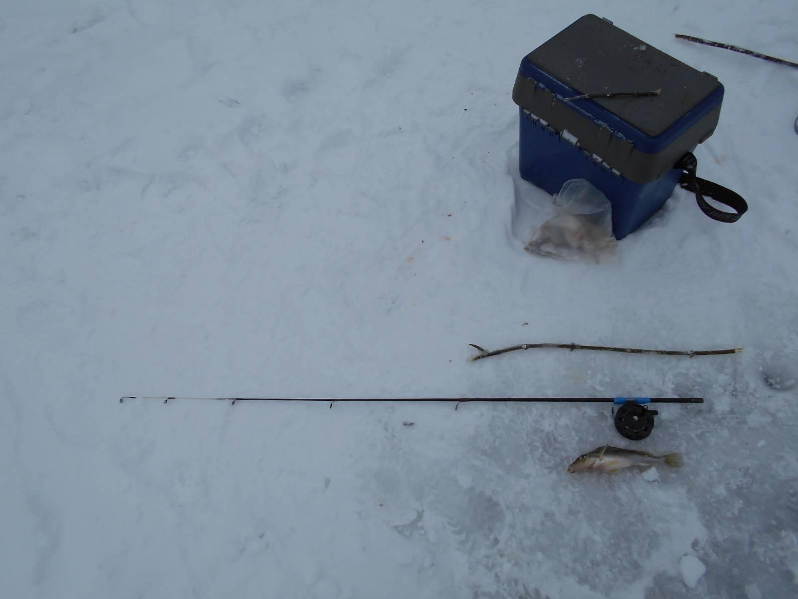 Ловля зимой на покаток: тонкости и секреты